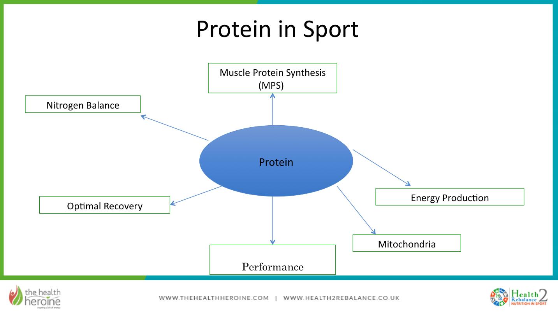 protein in sport